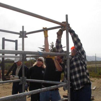 scaffold-training